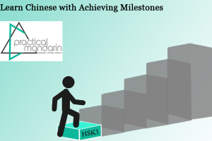 learn Chinese Milestone HSK Level 1